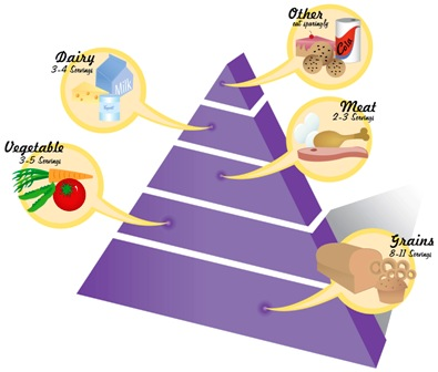 food pyramid diagram and dietary guidelinesthe usda updated the guidelines and the pyramid to advocate a healthy lifestyle and balanced diet   a concentration on fresh fruits and vegetables